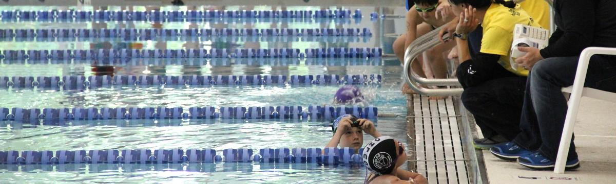 slide-swim