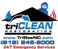 Triclean Restoration